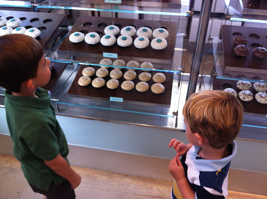 nephews choosing cupcakes