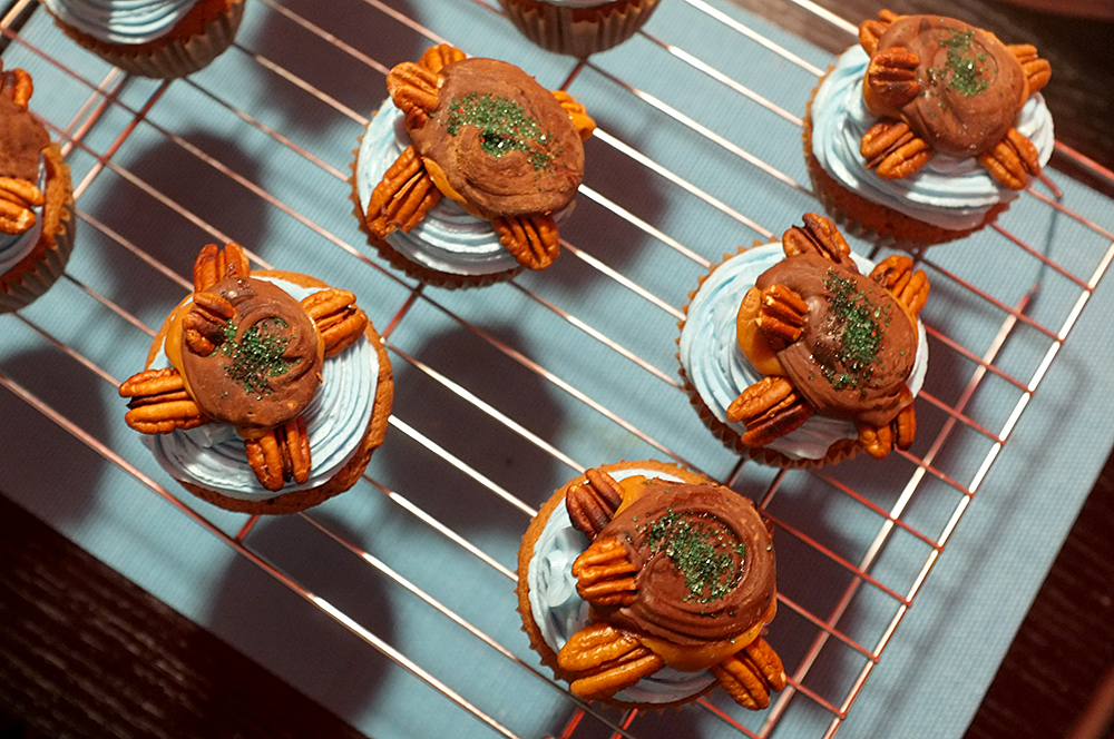 swimming turtle cupcakes