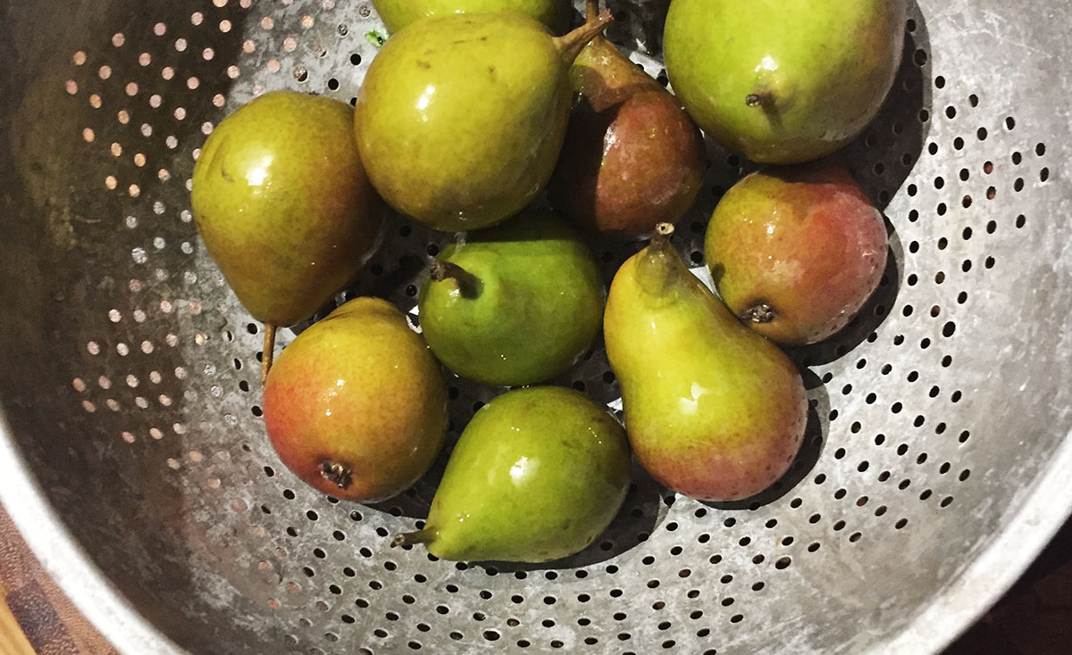 Seckel Pears for cupcakes